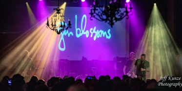GinBlossoms11